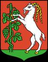 wrozki Lublin