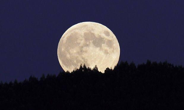 drewno księżycowe